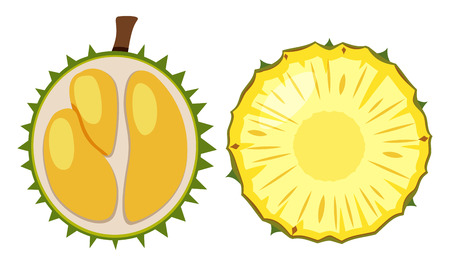 Durian and pineapple cut in half illustration Illustration