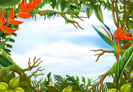 Border template with tropical rainforest illustration