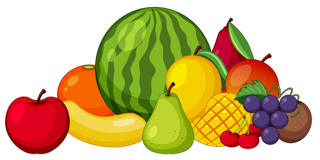 Different types of fruits on white background illustration