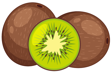 Two fresh kiwi fruits in whole and one cut in half illustration Illustration