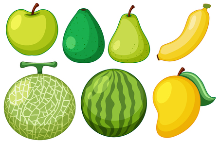 Different types of fresh fruits with green skins illustration. Archivio Fotografico - 98006645