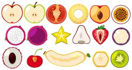 Tropical Fruits Slide in Half illustration. Illustration