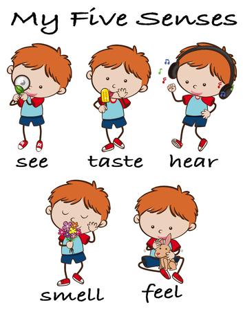 Boy with five senses vector illustration. Stock Illustratie