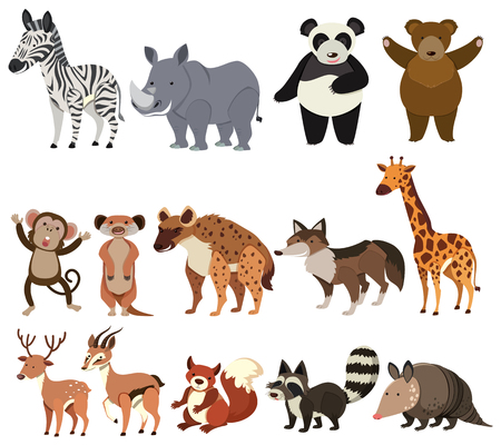 A Set of Animals on White Background illustration