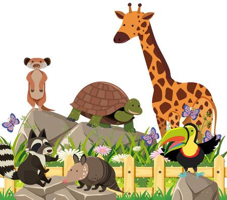 A Set of Exotic Animals illustration
