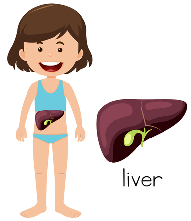 A Cartoon of a Girl Liver illustration Reklamní fotografie - 103619621