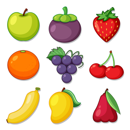 A Set of Organic Fruit illustration