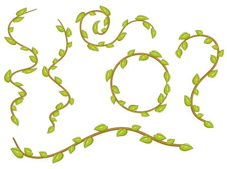 A set of leaves vines illustration