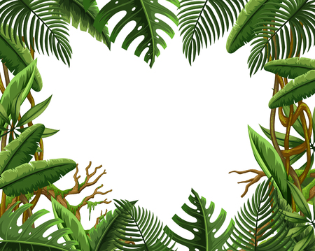 Blank jungle leave frame illustration