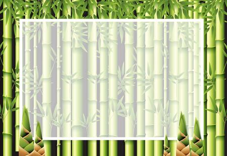 Beautiful nature bamboo template illustration Vektoros illusztráció