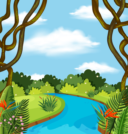 A river in forest landscape illustration Stock Illustratie