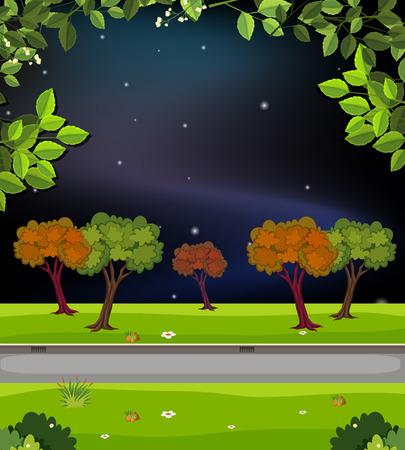 A nature road at night illustration Çizim