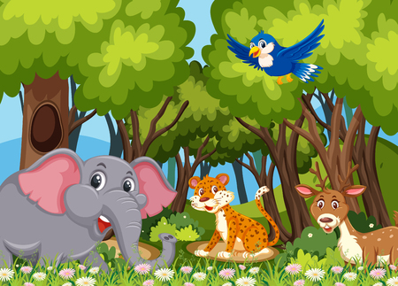 Wild animals in the woods illustration