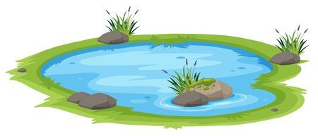 Een natuurlijke vijver op een witte achtergrond afbeelding Vector Illustratie