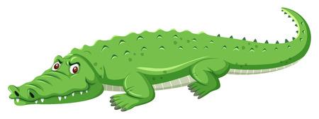 Un coccodrillo verde su sfondo bianco illustrazione