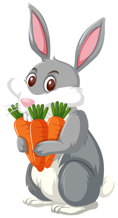 A rabbit holding carrot illustration