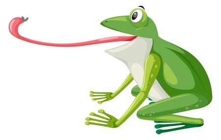 Een groene kikker op witte illustratie als achtergrond