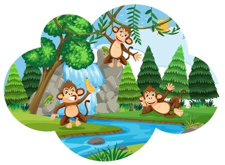 Cheeky monkeys in woods illustration
