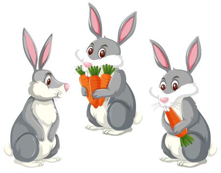 Set di tre simpatici conigli illustrazione