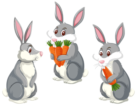 Set of three cute rabbits illustration Ilustração