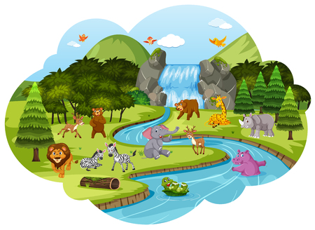 Animals in forest scene illustration