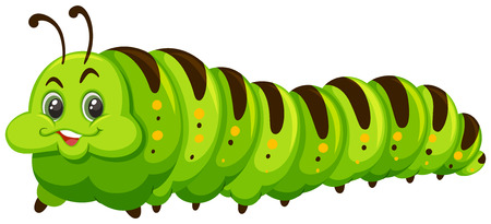 Cute happy green catapillar  illustration