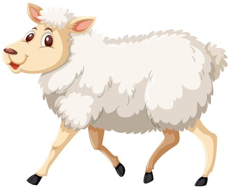Cute walking white sheep illustration