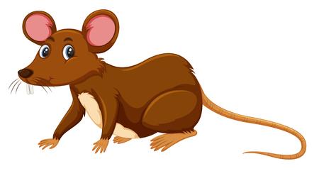Een rat op witte illustratie als achtergrond