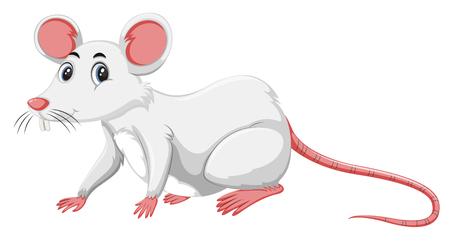 Una rata blanca en la ilustración de fondo blanco