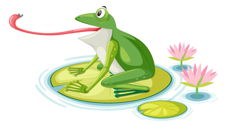 A frog eating fly on lily pad illustration Illustration