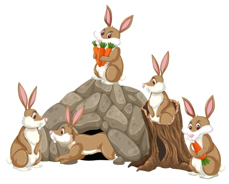 Group of rabbits scene illustration
