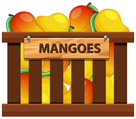 A crate of mangoes illustration