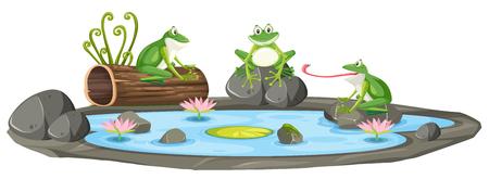 Rana aislada en la ilustración del estanque