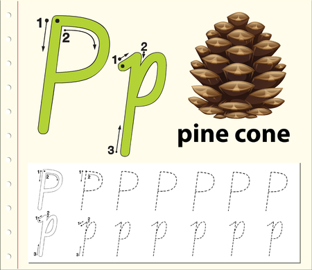 Letter P tracing alphabet worksheets illustration
