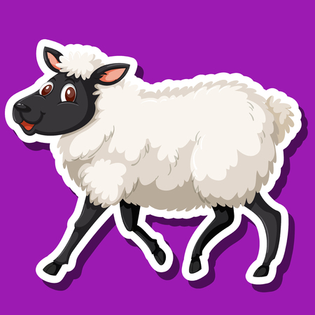 A sheep on purple background illustration
