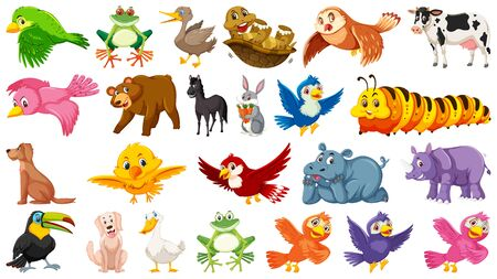 Set of birds and other animals illustration