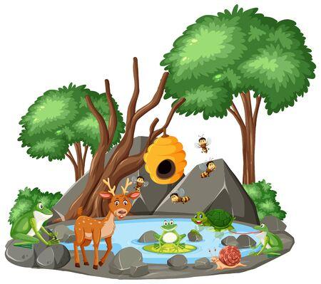 Background scene of wild animals and pond illustration
