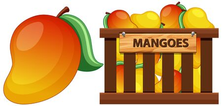 Mango fruit and a crate to boot illustration