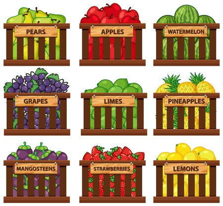 Nine types of fruits in wooden baskets illustration