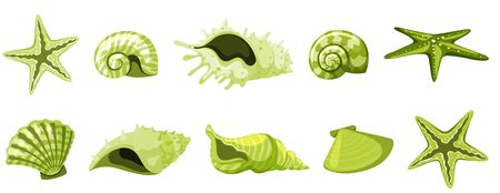 Set of isolated seashells in green color illustration