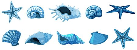 Set of isolated seashells in blue color illustration