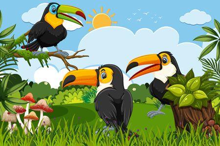 Toucans in jungle scene illustration