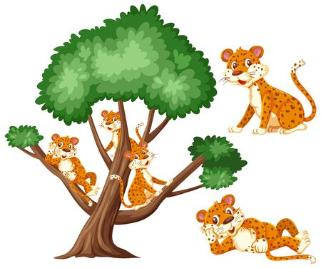 Big tree and many tigers on white background illustration Illustration