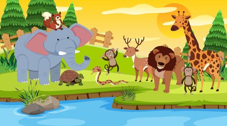 Scene with many wild animals together by the river illustration