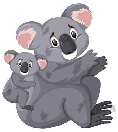 Sad looking koalas on white background illustration