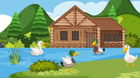 Scene with wooden cottage in the field and many ducks in the lake illustration