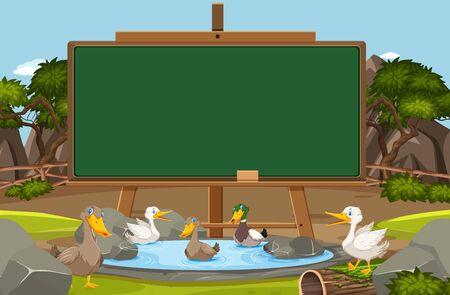 Blackboard template design with ducks swimming in the pond illustration Illustration