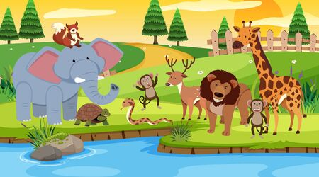 Scene with many animals standing by the river illustration