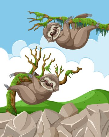 Scene with two slothes hanging on the branches illustration
