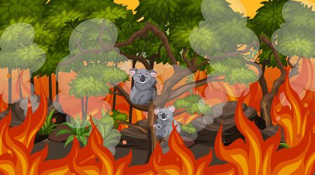 Scene with big wildfire and koalas trapped in the forest  illustration